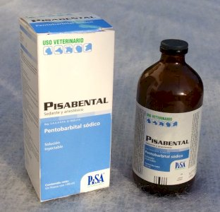 Acquista online soluzione di sodio pentobarbital nembutale per l'eutanasia